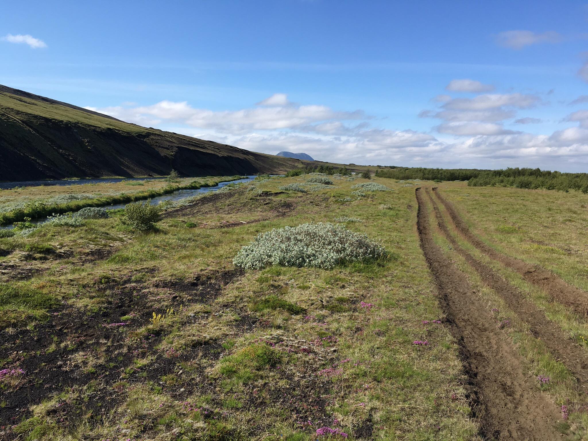 Foto eines Reitwegs mit einem Fluss. Im Hintergrund erkennt man einige Bäume und ganz klein eine Hütte eines Campingplatzes.